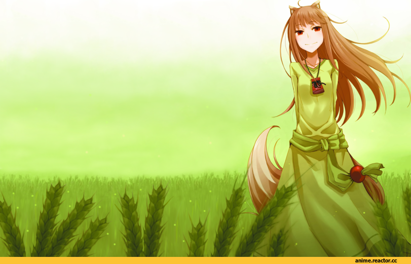 Spice and Wolf, Inumimi, Animal Ears, Holo, art, красивые картинки, wallpaper, Anime