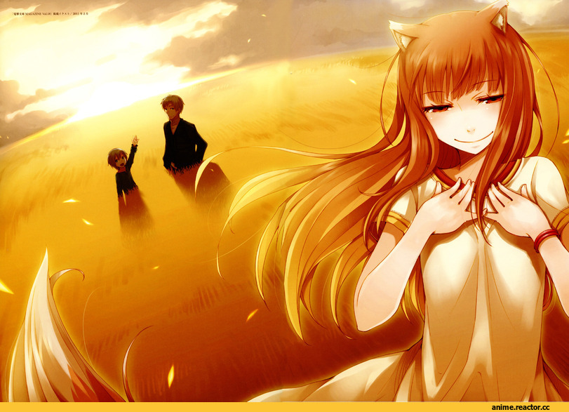 Spice and Wolf, Inumimi, Animal Ears, Horo, красивые картинки, art, hd, Anime